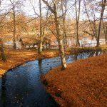 Bachlauf im farbenfrohen Herbst