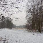 Schneebedeckte Wege