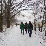 Wanderer von hinten gehen durch den Wald