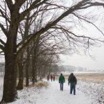 Wanderweg mit Bäumen am linken Rand