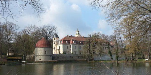 April-Wanderung zu den Buschwindröschen-Wiesen am Hermsdorfer Schloss